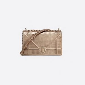 Dior Diorama Calfskin Bag (Medium)